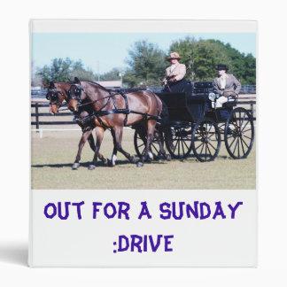 Weirsdale fl carriage show binder