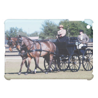 weirsdale fl carriage show case for the iPad mini