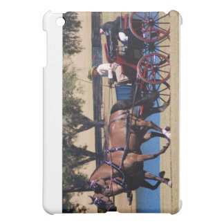 weirsdale fl carriage show iPad mini case