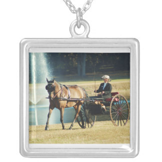 weirsdale fl carriage show necklaces