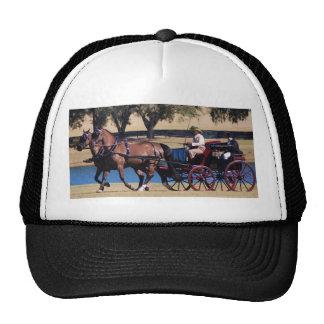 weirsdale fl carriage show trucker hat