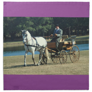 Weirsdale Florida Carriage Driving Horse Show Napkin