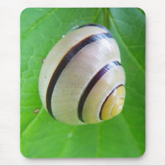Weis-brown snail mouse pad