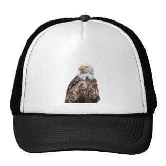 Weis head sea-eagle on ski RTS Trucker Hat
