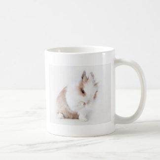 Weißes puscheliges Kanninchen das sich putzt Tee Tasse