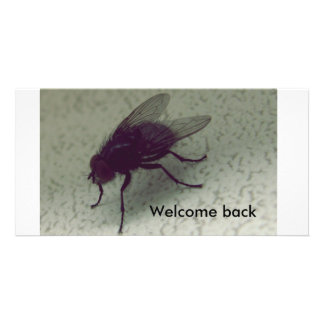 Welcome back card