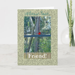 Welcome back cards zazzle welcome back friend card m4hsunfo