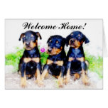 Welcome Home  Doberman Puppies greeting card