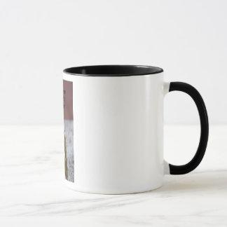 Welcome Home Soldier Mug