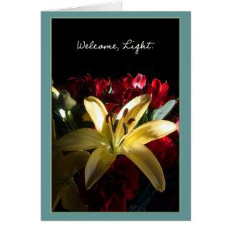Welcome, Light / Bienvenida, luz Greeting Card