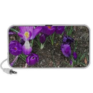 Welcome Spring Portable Speaker