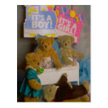 Welcome the new baby bear post cards