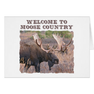 Welcome to Moose Country Card
