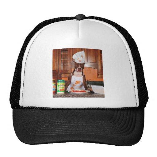 Welcome to my kitchen trucker hats