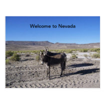 Welcome to Nevada Postcard with 2 burros