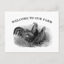 Welcome to our Farm Vintage Rooster and chicken Postcard