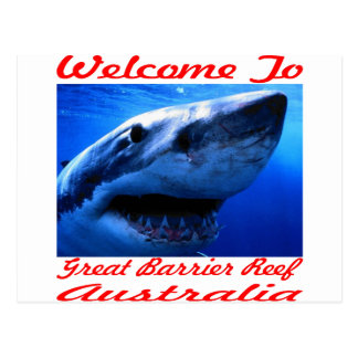 Welcome To The Great Barrier Reef Shark Postcard