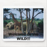 Welcome to the WILD!!! Mouse Mats