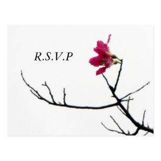 Welcoming Spring/ Oriental Zen Flora RSVP Postcard