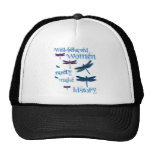 Well-behaved Dragonflies Mesh Hats