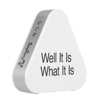 Well It Is What It Is.ai Speaker