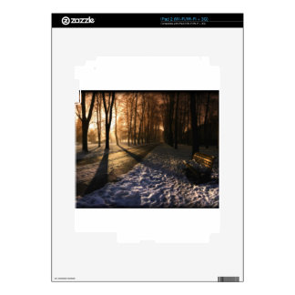 Well Traveled Snow Covered Path iPad 2 Skins