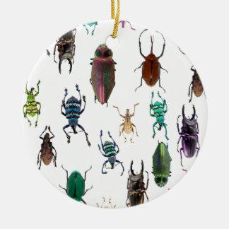 Wellcoda Beetle Type Habitat Insect Life Ceramic Ornament