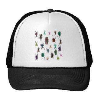 Wellcoda Beetle Type Habitat Insect Life Trucker Hat
