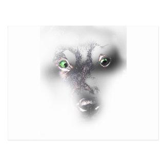 Wellcoda Cute Dog Puppy Face Labrador Fun Postcard