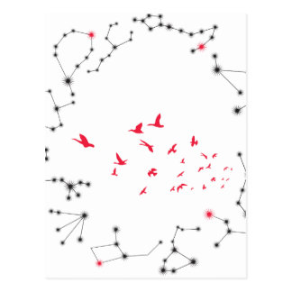 Wellcoda Flock Of Seagull Bird Crazy Print Postcard
