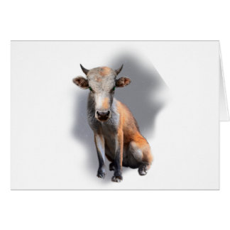 Wellcoda Fox Cow Freak Mutant Fake Animal Card