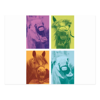Wellcoda Funny Animal Laugh Crazy Horse Postcard