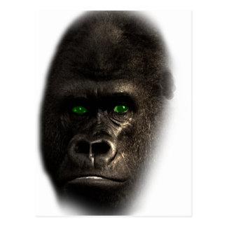 Wellcoda Gorilla Ape Monkey King Jungle Postcard