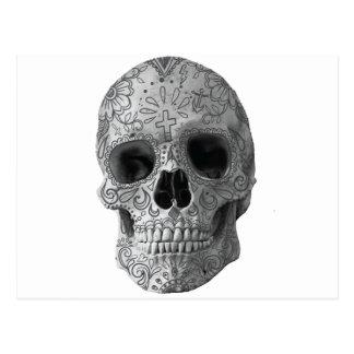 Wellcoda Human Candy Skull Death Head Postcard