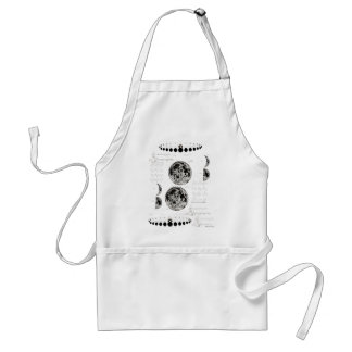 Wellcoda Stages of The Moon Space Life Adult Apron
