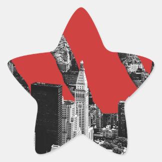 Wellcoda Vintage Apparel NYC New York Fun Star Sticker