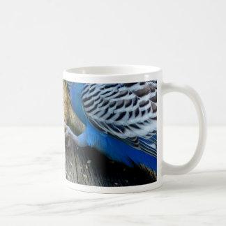 Wellensittiche (Melopsittacus undulatus) Mugs
