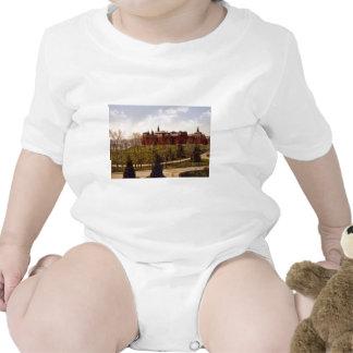 Wellesley College Massachusetts Baby Creeper