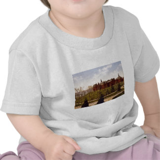 Wellesley College Massachusetts T-shirts