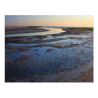 Wellfleet Bay Wildlife Sanctuary Cape Cod Tidal Postcard
