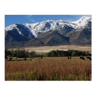 Wellsville Mountains Postcard