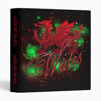 Welsh Binder, St. David's Day, Wales, Dragon