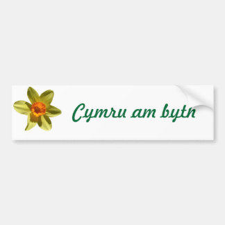 Welsh bumper sticker with daffodil