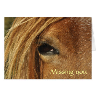 Welsh cob, Missing you Greeting Card