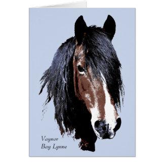 Welsh cob portrait birthday card