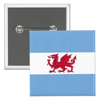 Welsh Colony In Patagonia, Argentina flag Pinback Button