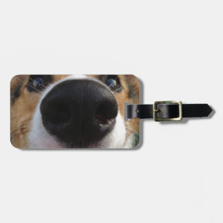 Welsh Corgi Dog Nose Collection Bag Tags