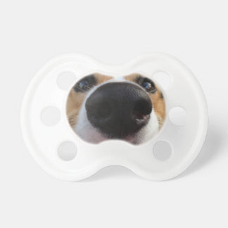 Welsh Corgi Dog Nose Collection Pacifier