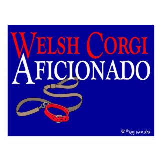 Welsh Corgi Postcard
