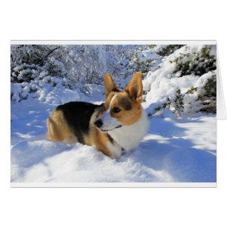 Welsh Corgi Snow Day Card